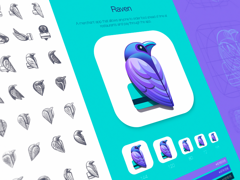 Raven app icon and brand identity design
